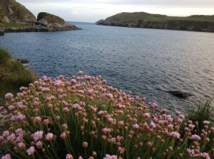 South harbour, Cape Clear, a favourite spot to sit and dream