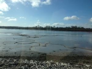 Cobh mudflats Cork